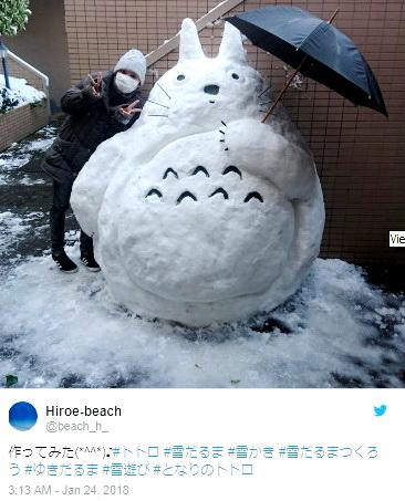 Японию накрыли снегопады и вот что из этоговышло
